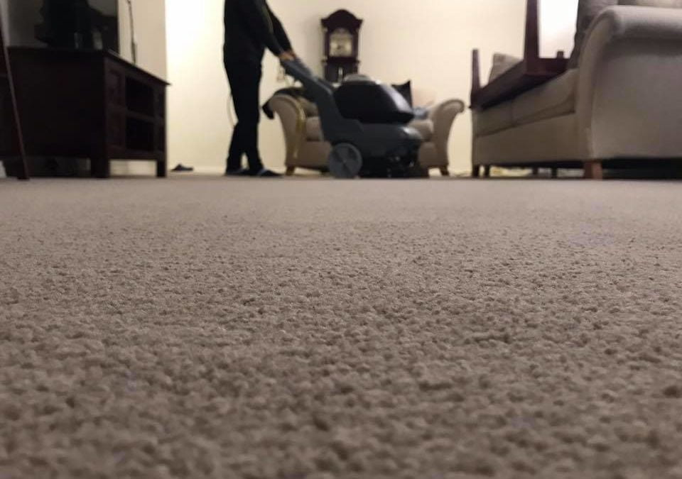 Should I Clean the Carpets Before I Move into My New Home?
