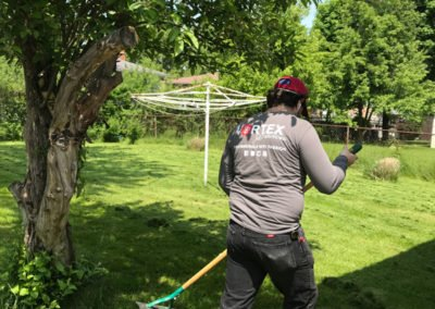 Landscaping Cleaning London